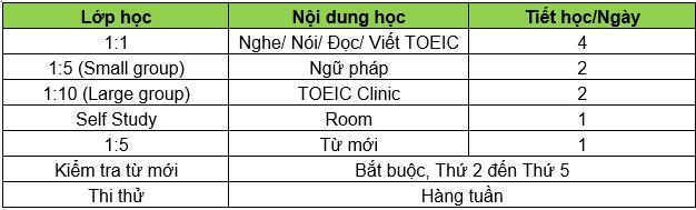 toeic-bao-dam
